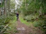 Single track on Hornby Island